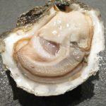 ウォーターグリルキッチンでランチ!海洋深層水牡蠣で約10年ぶりの生ガキ解禁